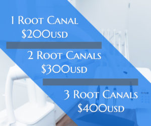 root canal costs dreambody clinic