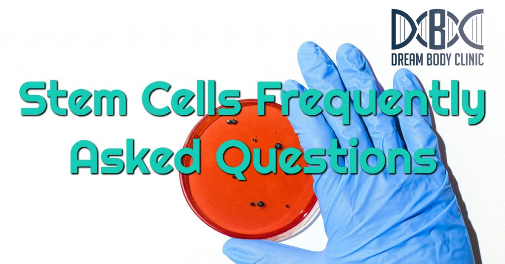 Stem Cell Knee Repair Treatment frequently asked questions at dream body clinic knee stem cell therapy