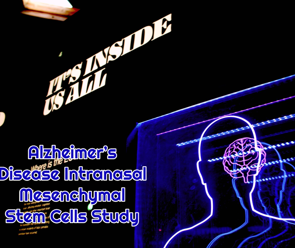 Alzheimer's Disease Intranasal Mesenchymal Stem Cells Study at dream body clinic alzheimers stem cell therapy