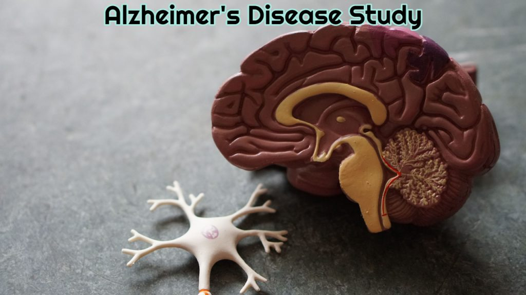 Alzheimer's Disease Study